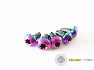 Rainbow Titanium Disc Rotor Bolts Montain Bike
